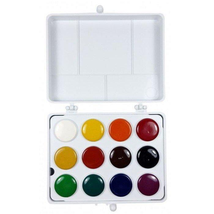 Acuarele pe baza de ulei 12 culori Colibri